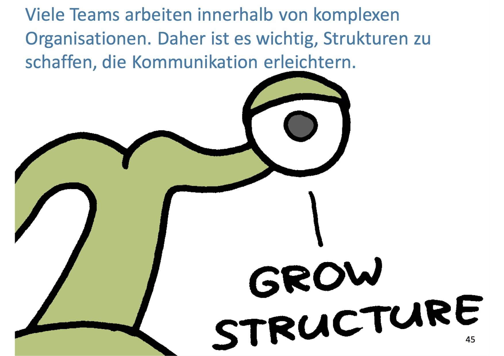 Management 3.0 GrowStructure